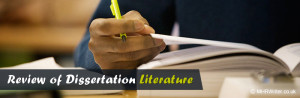 How To Write A Literature Review Dissertation With Professionals