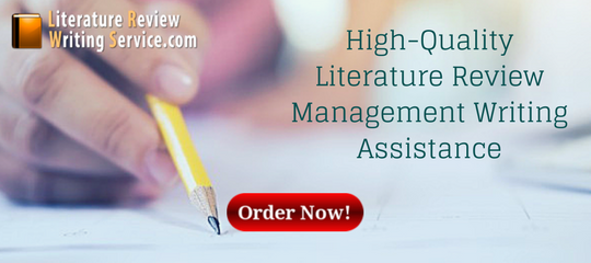 high-quality literature review management writing assistance