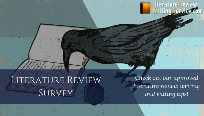 lit survey review