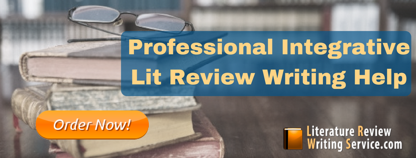 professional integrative lit review writing help