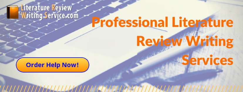 professional literature review writing services